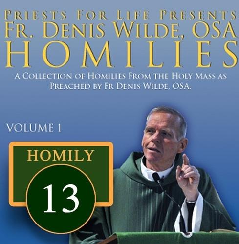 Homily by Fr. Denis Wilde, OSA -Discrimination Breeds Moral Injustice Race Religion Life