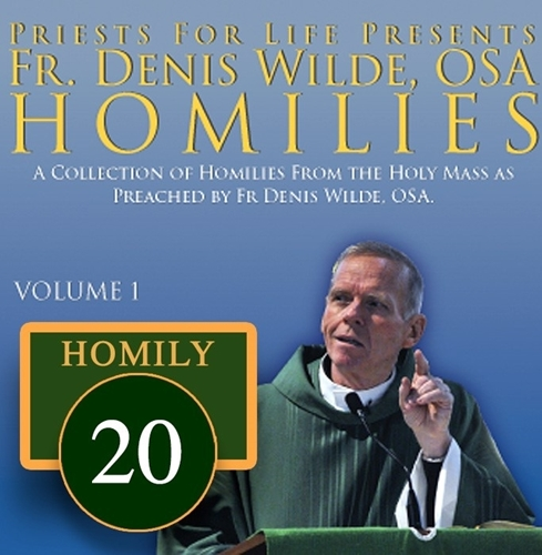 Homily by Fr. Denis Wilde, OSA -Lord for an Understanding Heart to Discern Right Wrong